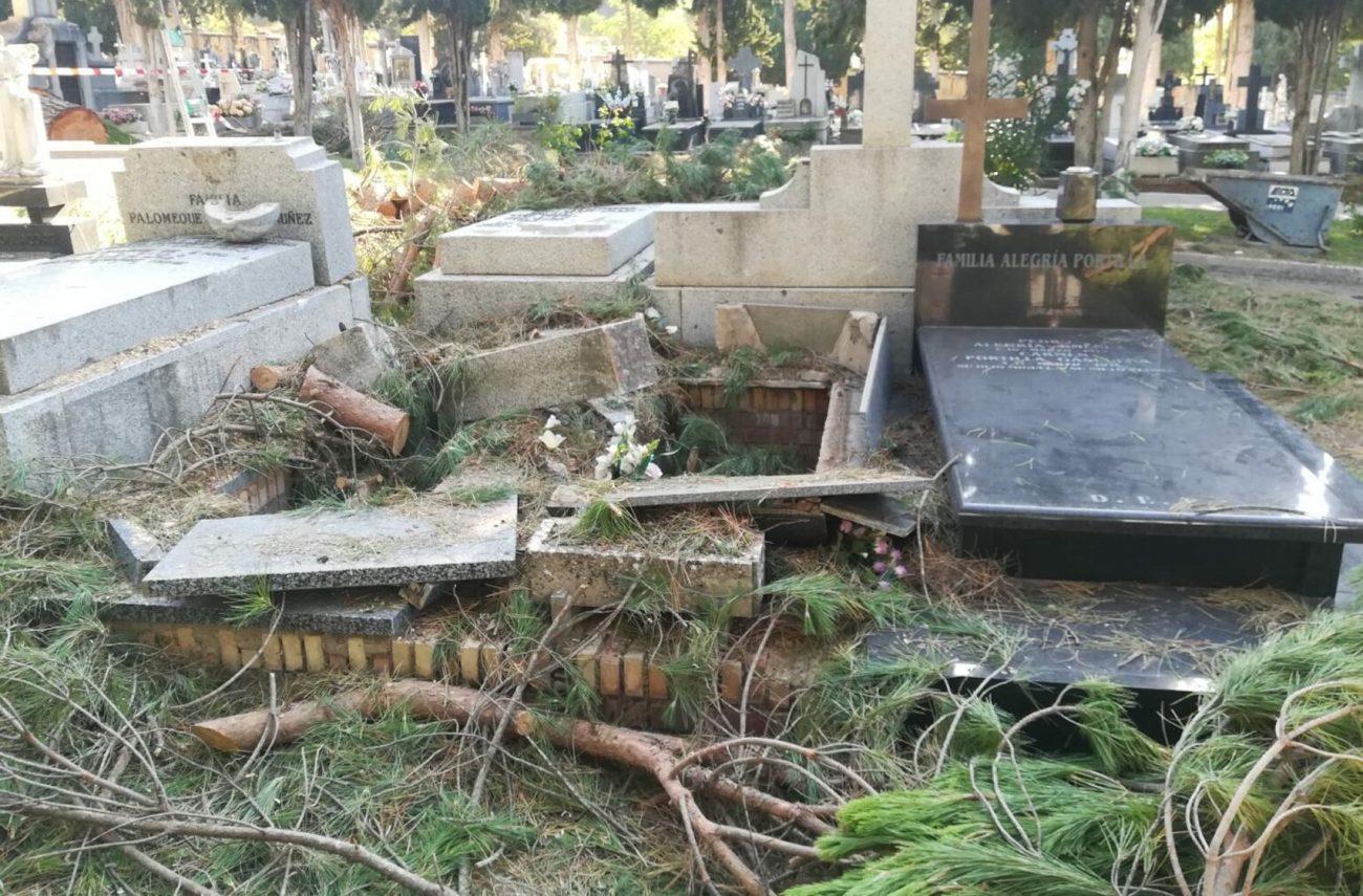Esquelas.es   La caída de dos pinos sobre cinco tumbas del cementerio de Cuenca produce importantes destrozos