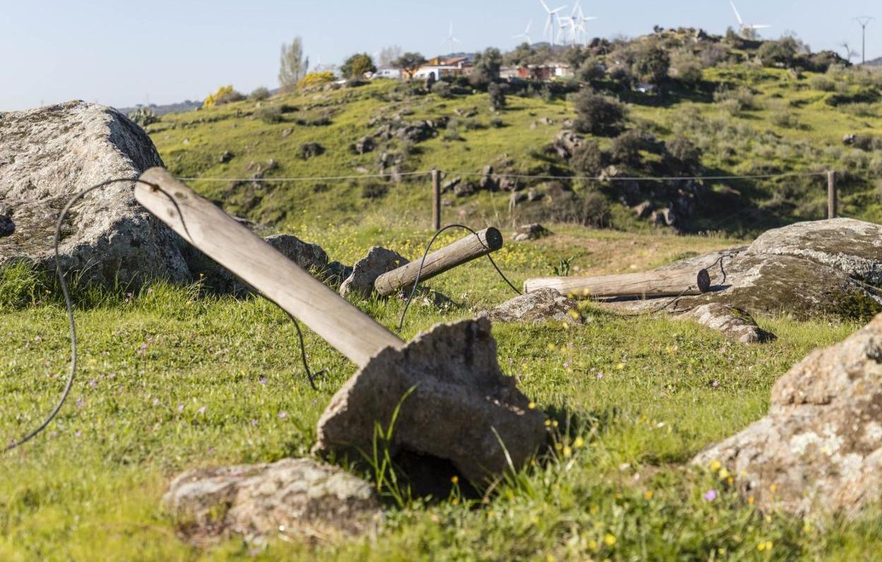 Esquelas.es | Cs pide la rehabilitación del cementerio judío antes de la llegada de la exposición ?Las Edades del Hombre?