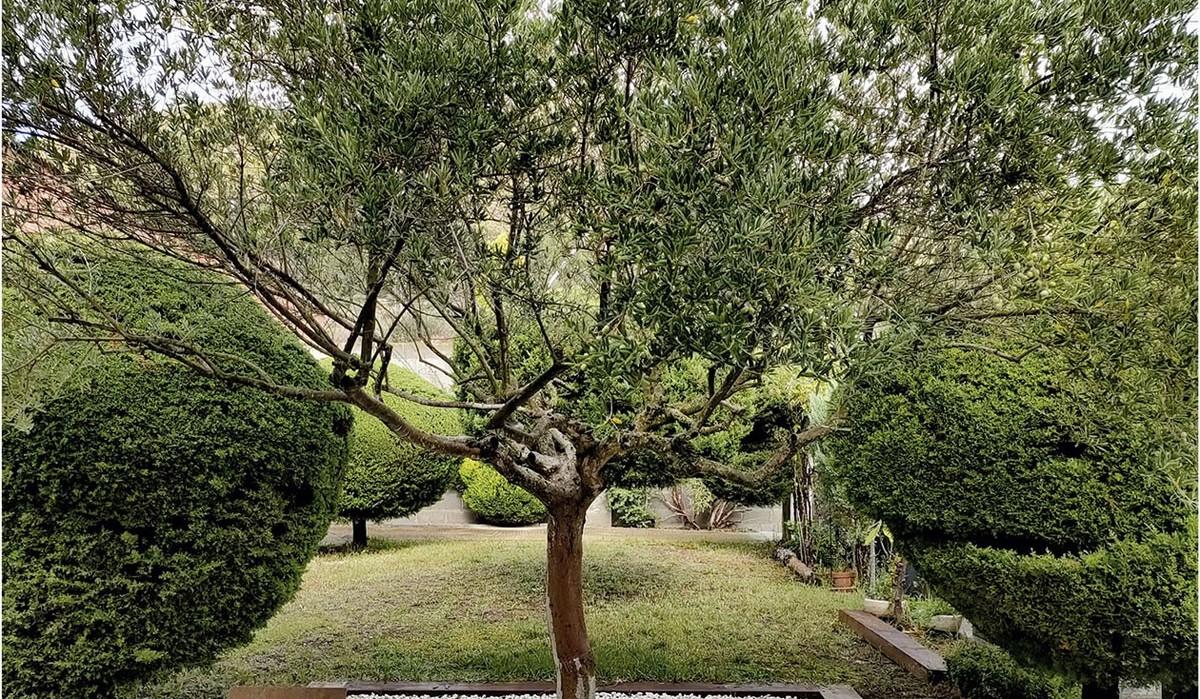 Esquelas.es   Sant Vicenç habilita un espacio en el cementerio municipal en recuerdo al duelo gestacional y perinatal