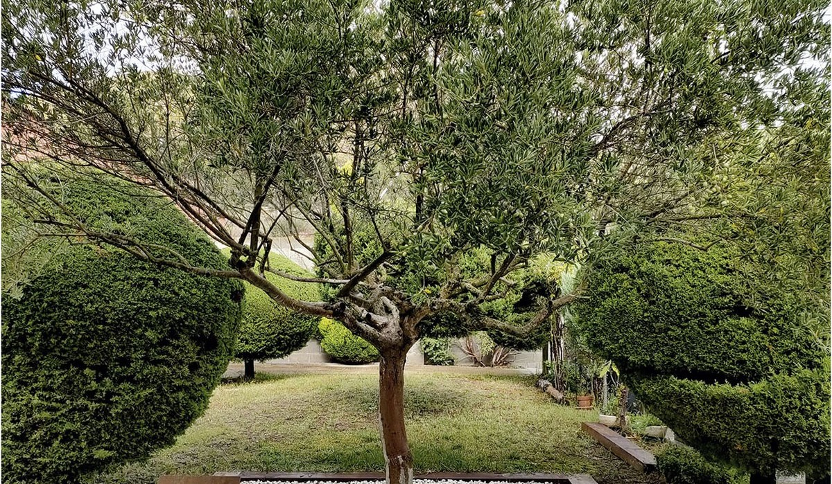 Esquelas.es | Sant Vicenç habilita un espacio en el cementerio municipal en recuerdo al duelo gestacional y perinatal